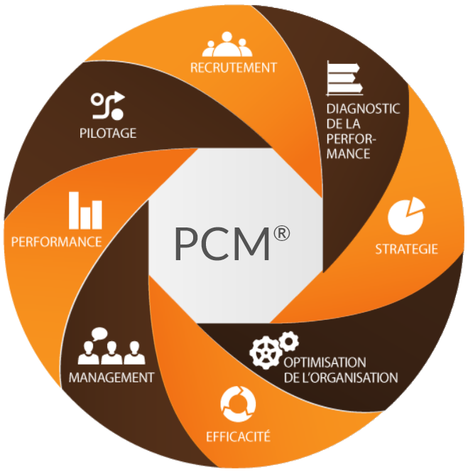 Process Communication Model ® | DOUBLEYOU Consulting